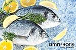 foodfotografie fisch