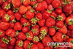 strawberries closeup