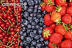 strawberries bilberries and red currants