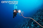 diver with photo equipment